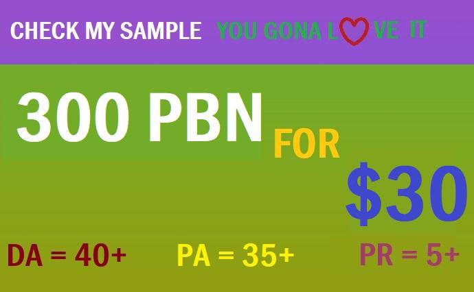 Powerful DA 40+ PA 35+ WEB 2.0 300 PBN in 300 unique blog site
