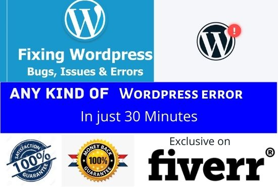 I will fix any kind of wordpress issue within 30 minutes