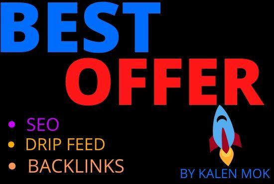 I will do 60 manual drip feed seo backlinks
