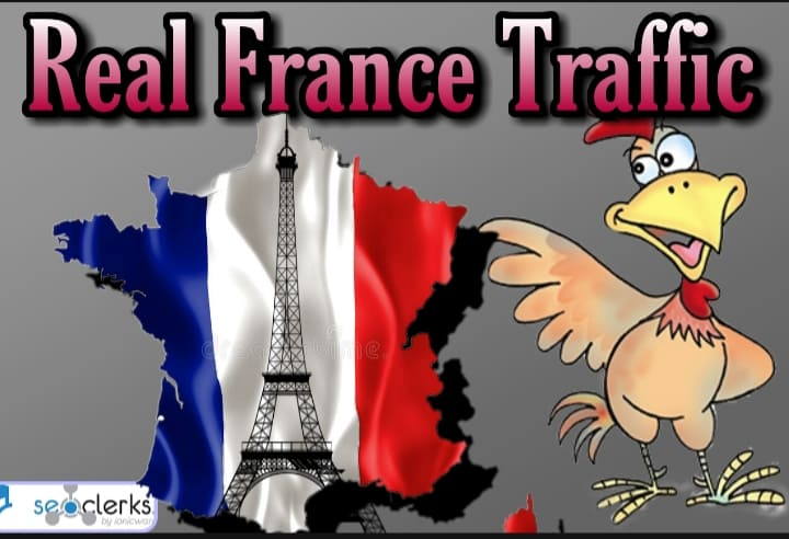 1600 FRANCE TARGETED traffic to your website or blog