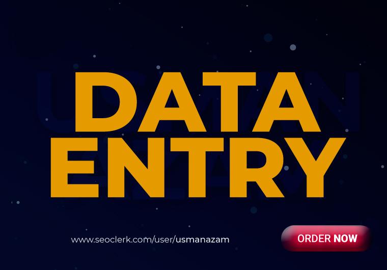 I will do instant data entry work