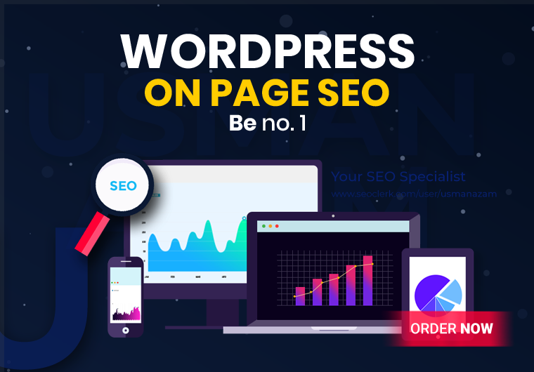 I will do complete on-page and technical SEO of your wordpress website