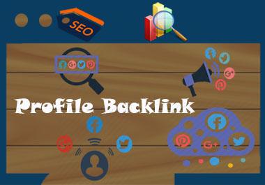 I will do 150 SEO profile backlinks manually
