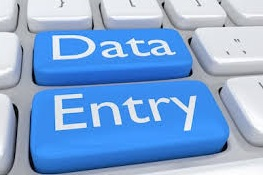 I will do any type of data entry as excel, word, pdf,  pdf fillable form etc.