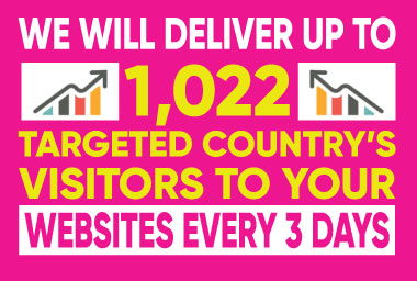 I will deliver up to 1,022 visitors,  us traffic to your business website every 3 days
