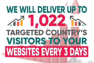 I will deliver up to 1,022 visitors to your business website every 3 days