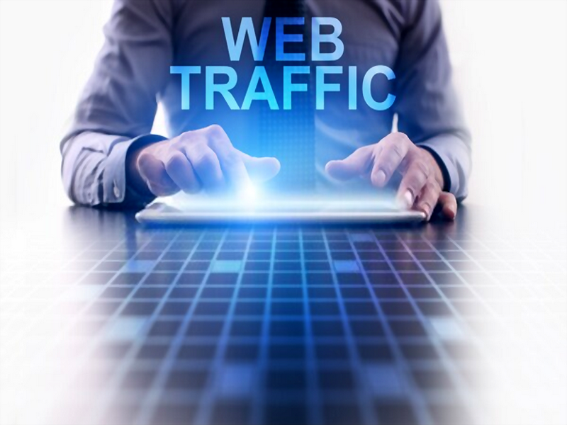 1000 Web Visitor Authentic Traffic