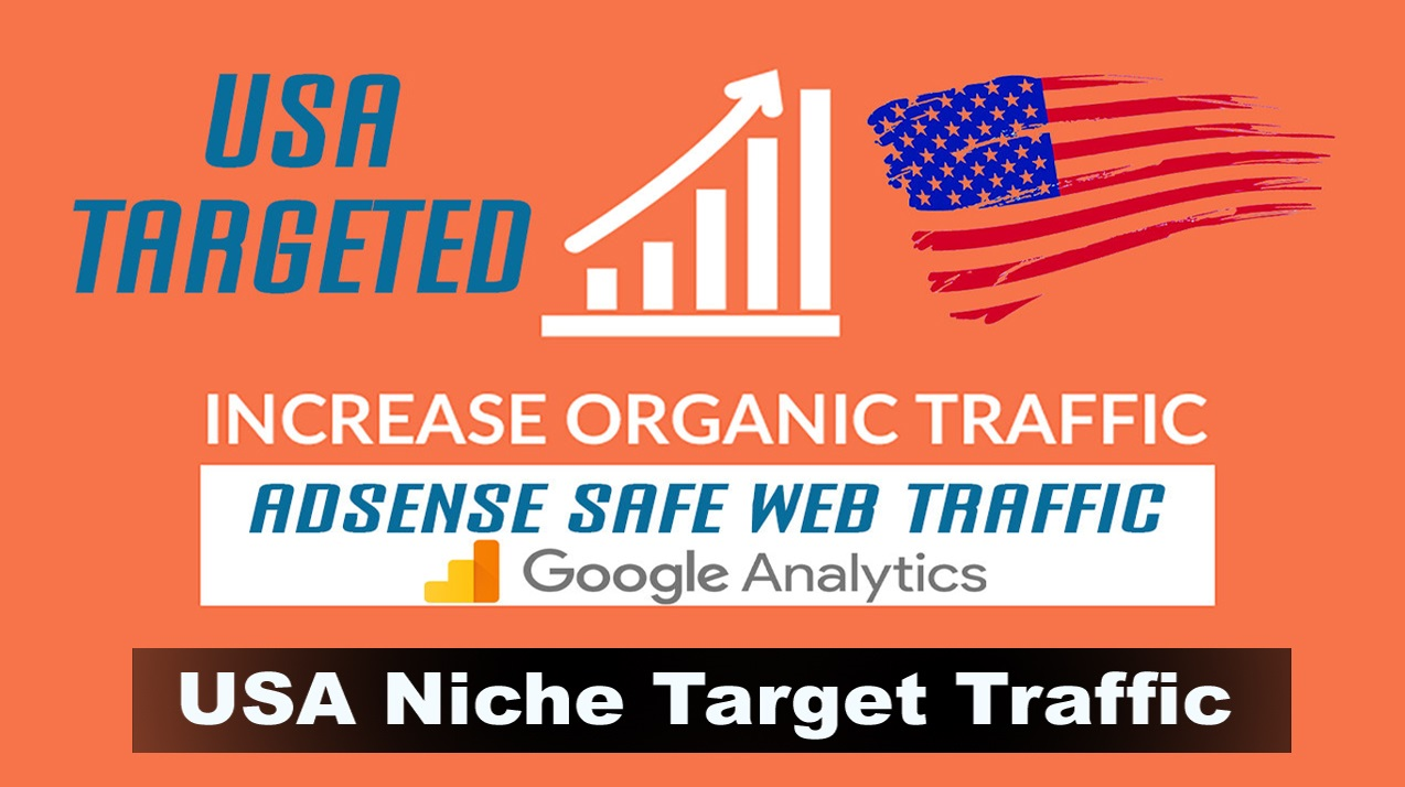 USA targeted Niche targeted traffic Increase Organic Traffic for 30 days