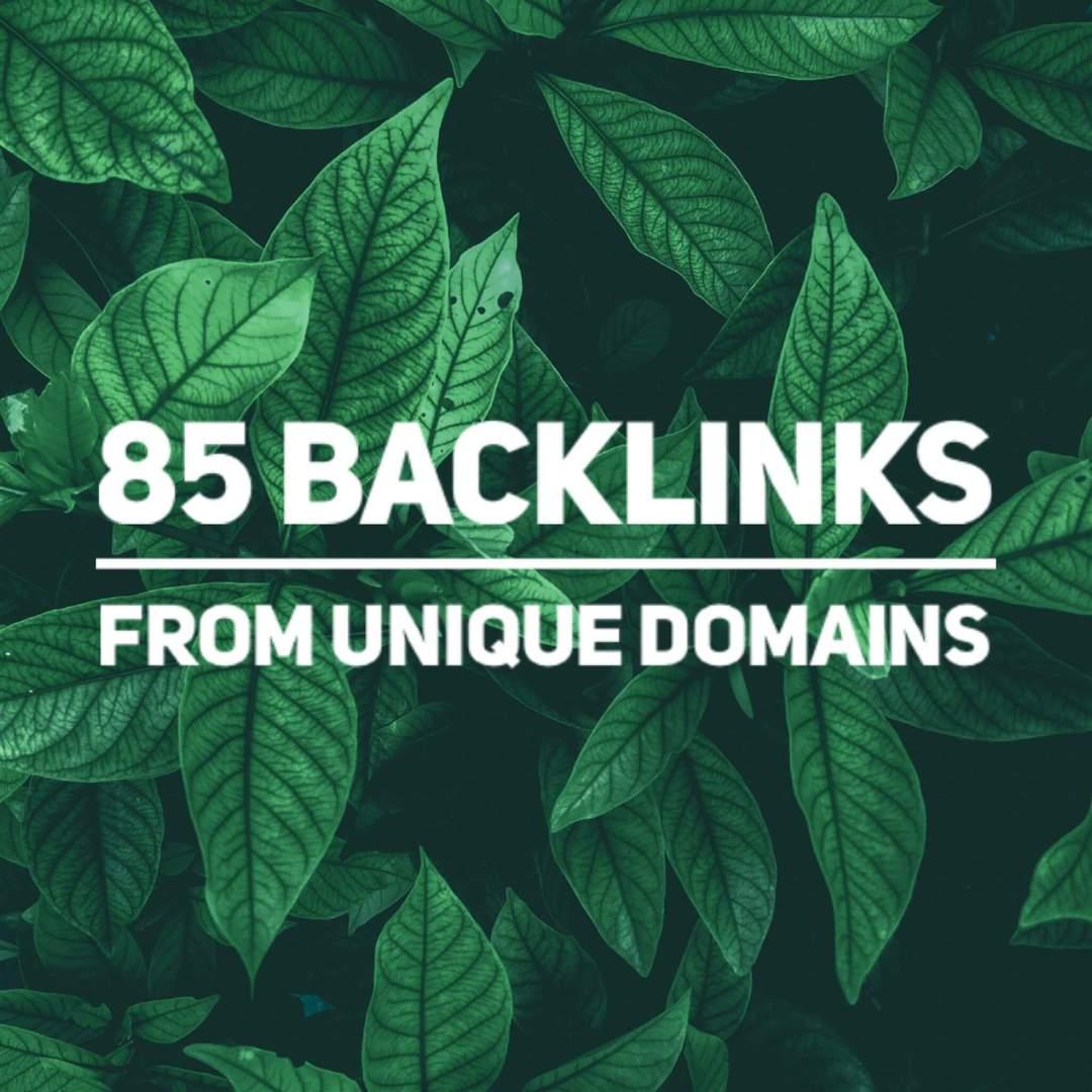 85 Unique 100 DA Domain Backlinks