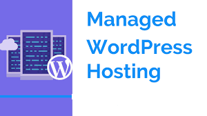 I will provide you 1 year managed WordPress hosting for personal website
