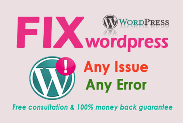I will fix wordpress errors,  bugs,  issues