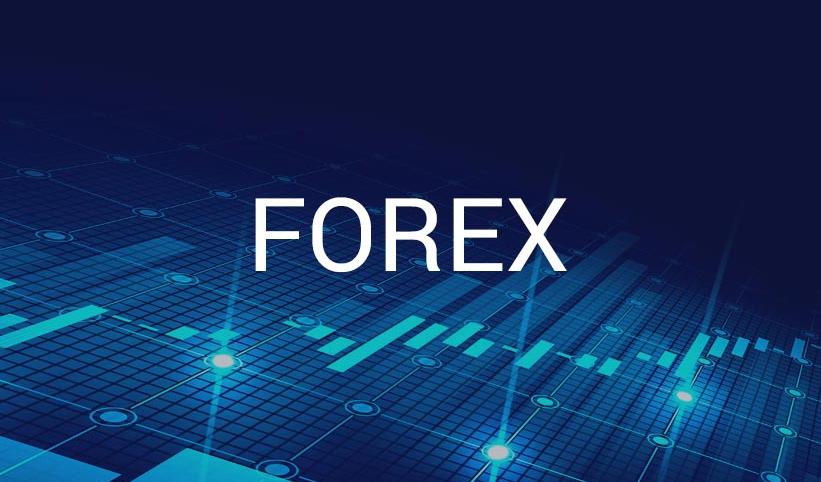 I will build meta trader expert advisor,  code forex ea robot mt4,  mt5 indicator