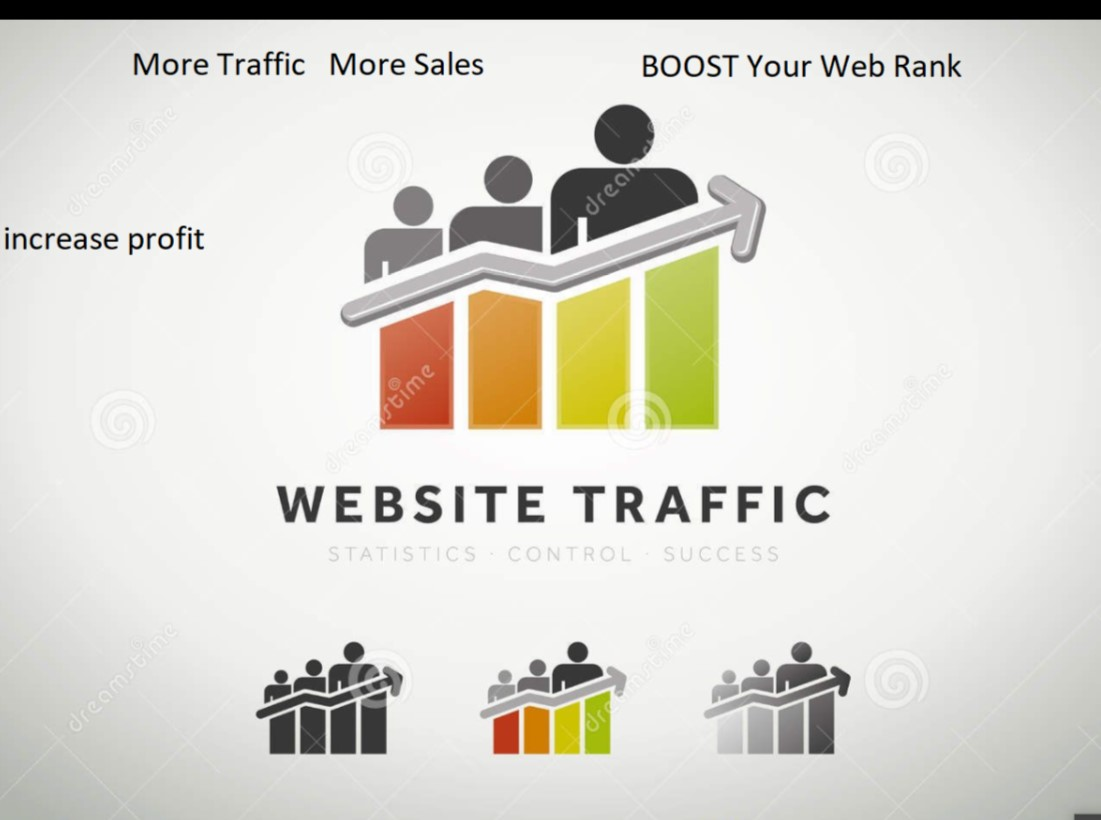 Get Real Human Visitors for 30 Days with Search Keywords Digital Marketing / Web Traffic