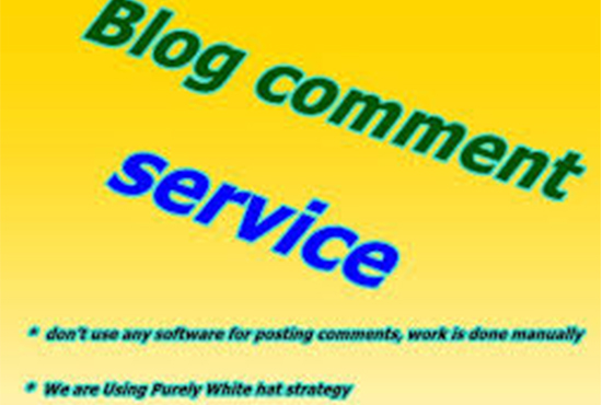 I will do 600 blog comments backlink