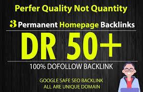 Build 10 High DR 50 HomePage PBN Backlinks