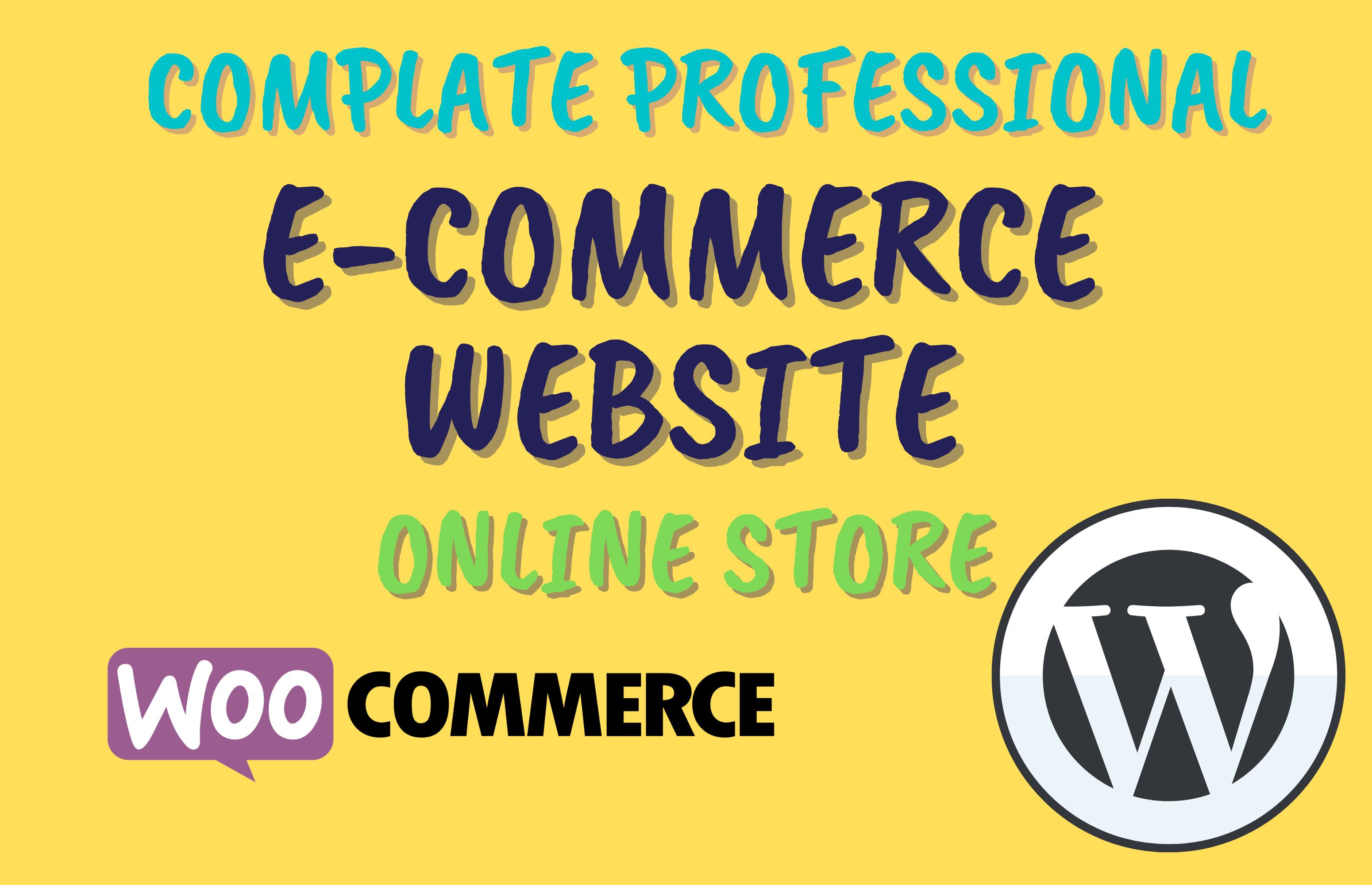 I will make WordPress ecommerce website for online store