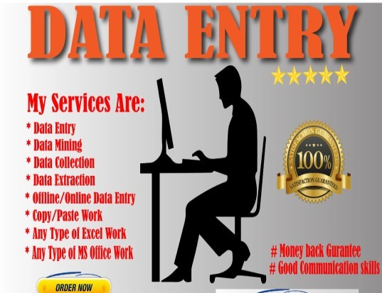 Data Entry & Microsoft Offices Services within 1-2 days
