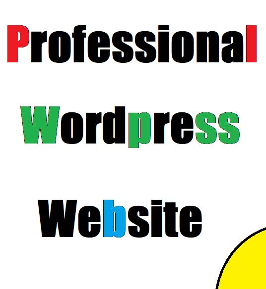 I will create a Wordpress Website