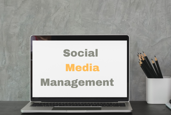 I will manage and grow your social media marketing