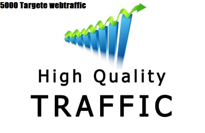 Organic Bring Real Visitor's 5000 Targeted web traffic