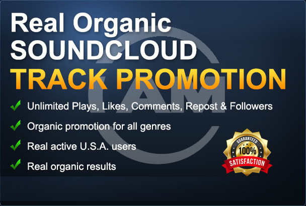 organic music promotion for tracks to US audience