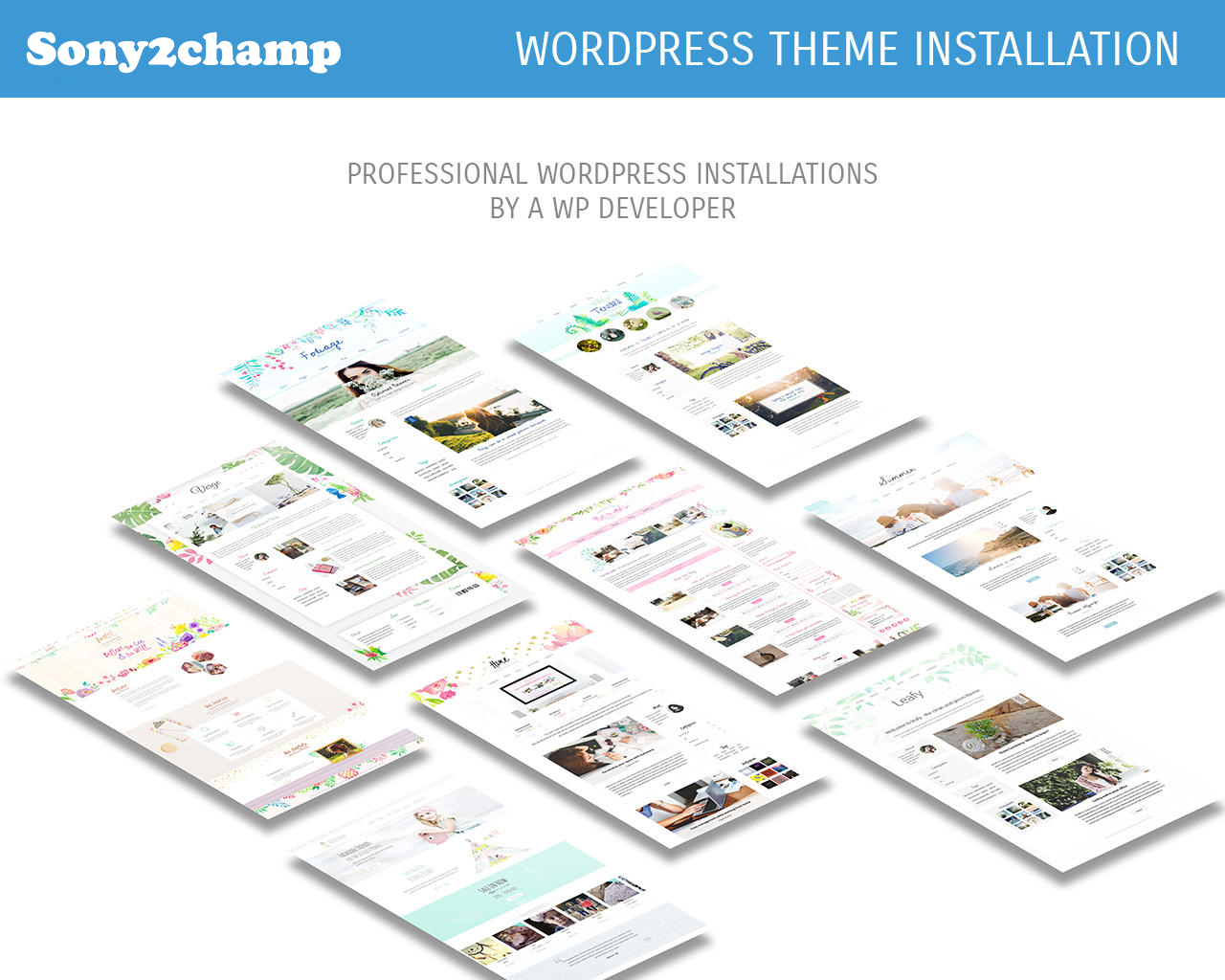 All-in-One WordPress Website Launching Pack,  Looking for the Best Wordpress Expert