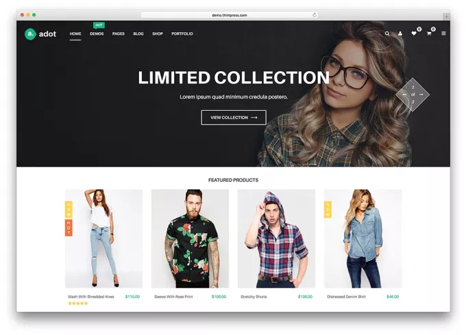 I will design online ecommerce shopping store wordpress website with Premium theme