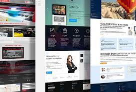 I will do professional wix website design or redesign website