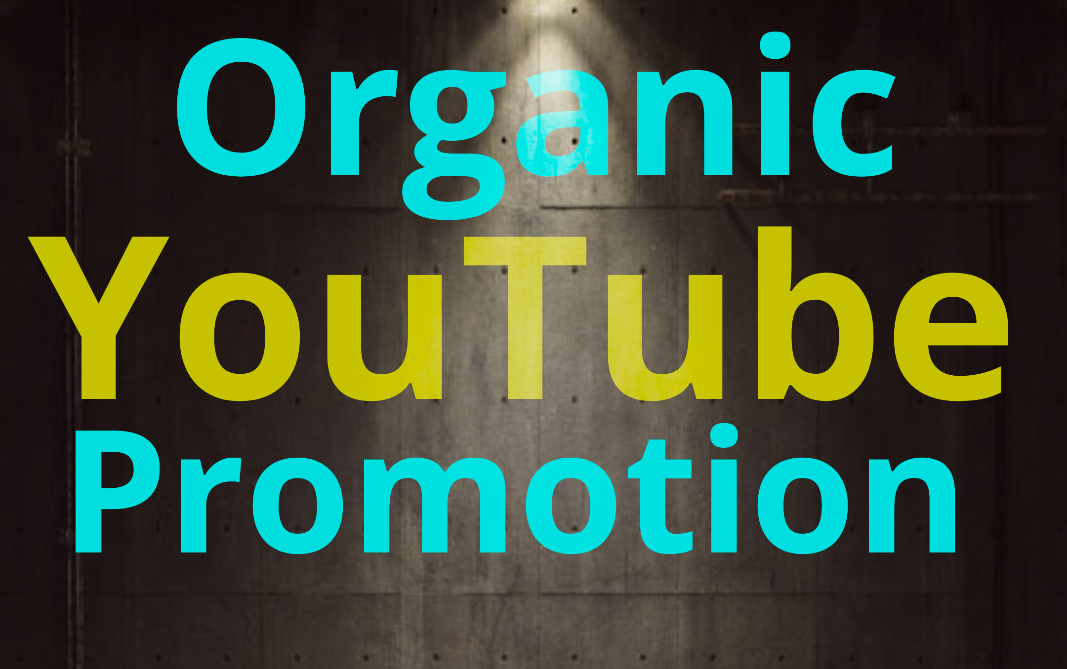 Do High Quality and Organic YouTube Video Promotion For Video Rankings
