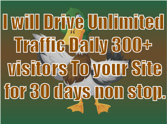 I will Drive Unlimited Traffic Daily 300+ visitors To your Site for 30 days non stop.