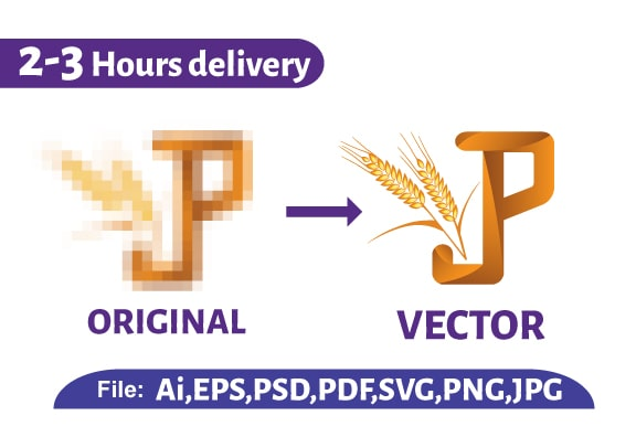 I will vector trace or redraw your logo in vector format