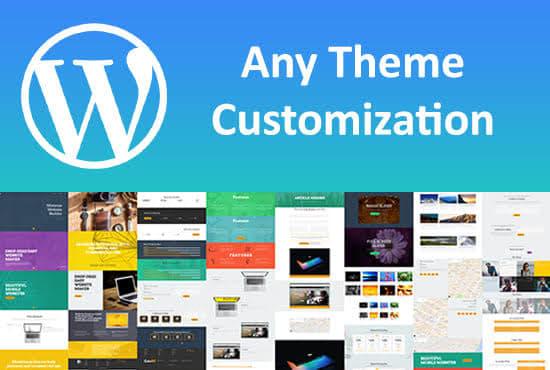 I will fix your wordpress issues or,  any theme customization