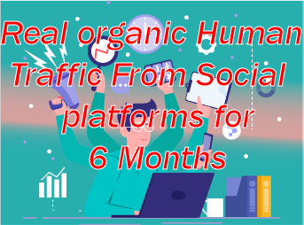 Real organic Traffic daily 100+ for 6 Month 24/7 non stop