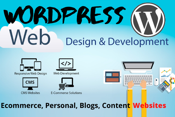 I will Design,  Develop and do Maintenance for a WordPress Website for you