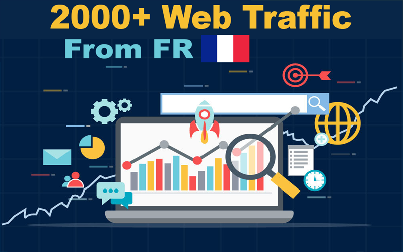 I Will drive real 2000 web traffic visitors to your site or link from FR