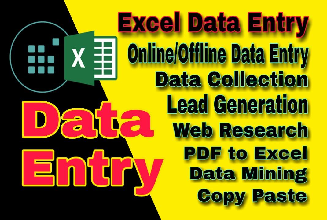 I will provide data entry service
