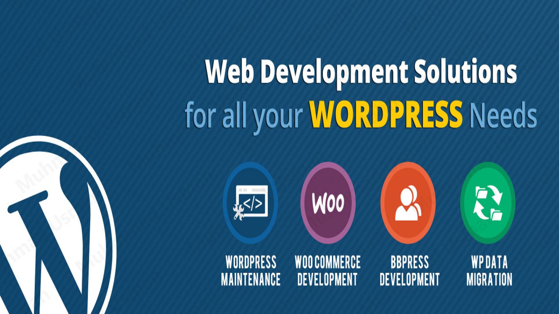I Will Develop Creative WordPress Website
