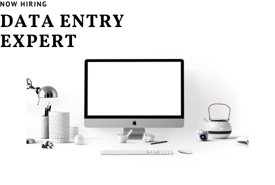 I will do perfect data entry, typing,  data collecting and copy paste work