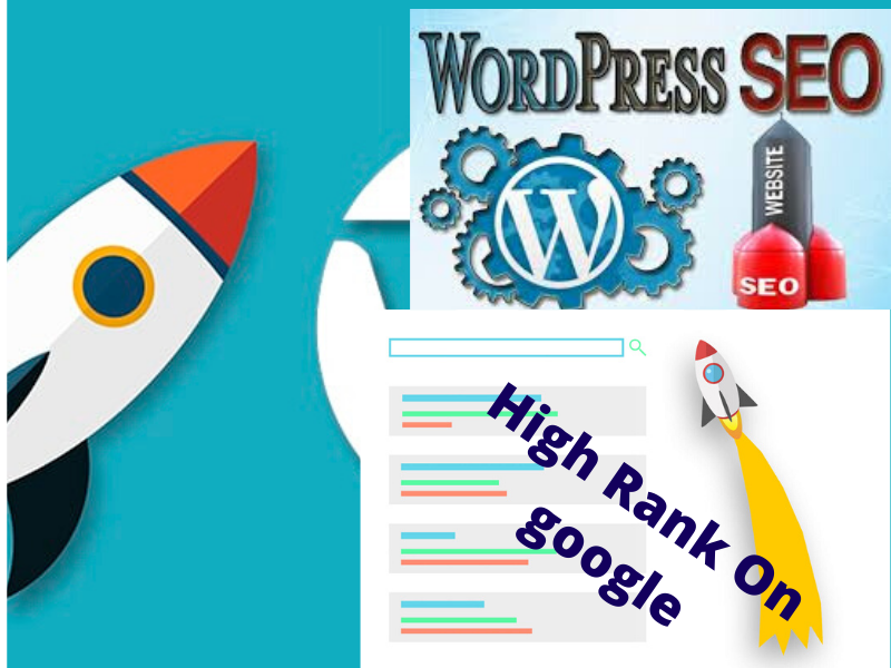 I will do wordpress yoast seo optimization, meta tag, image alt tag and schema markup