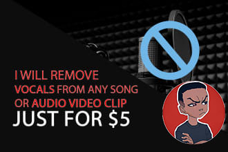 I will remove vocal,  voice from your audio file or music