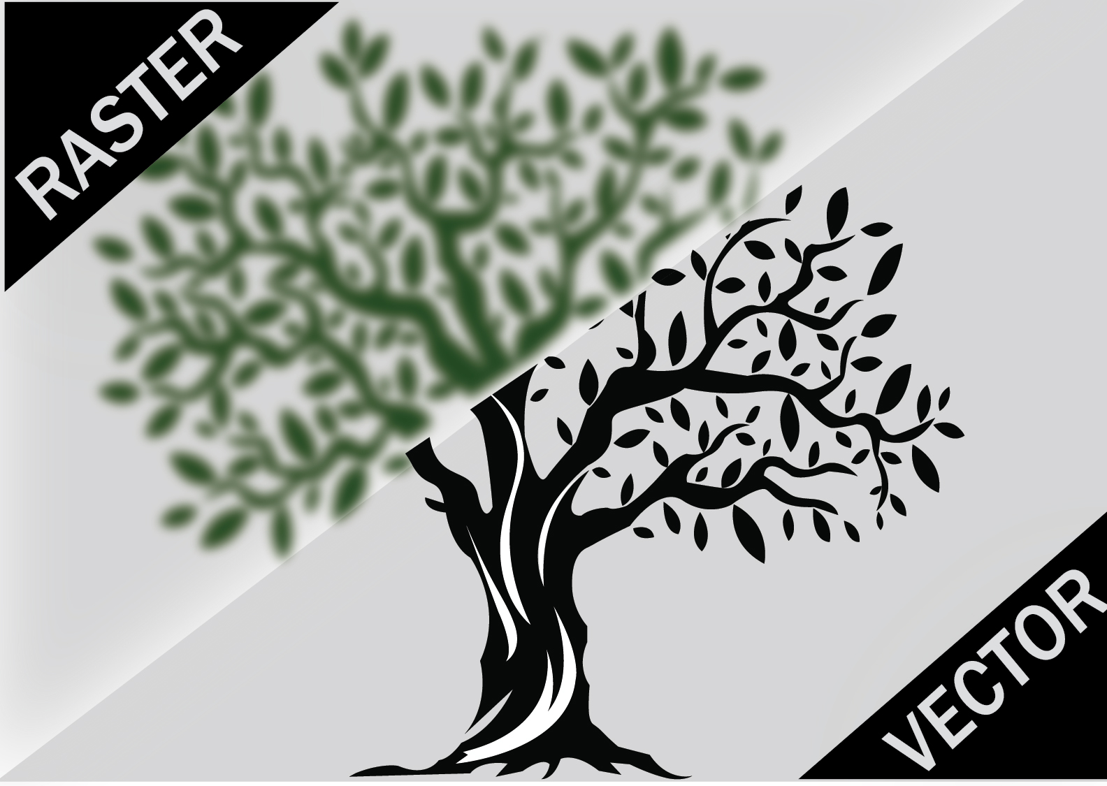 I will do vector a logo, image or anything in 12hr