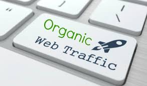 5,000 Keyword Targeted Organic Traffic with Low Bounce Rate