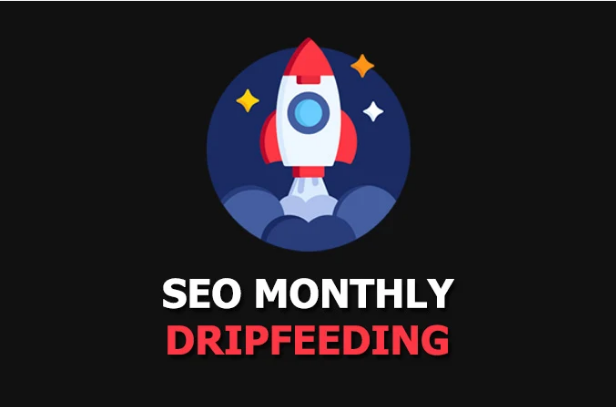 i will do monthly/weekly off-page SEO dripfeeding