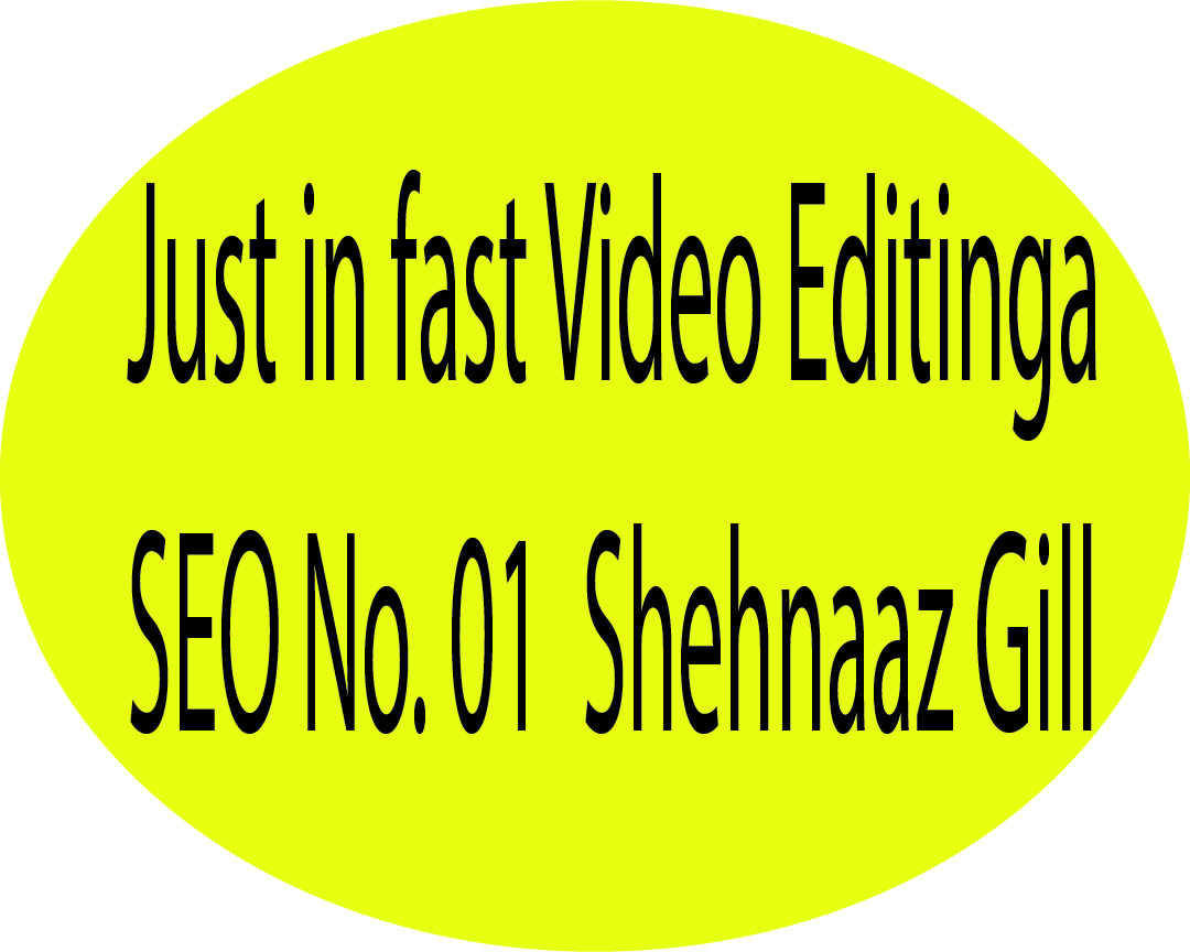 I will professionally edit your any type videos