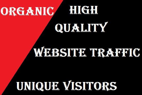 3000 High Quality Website Traffic