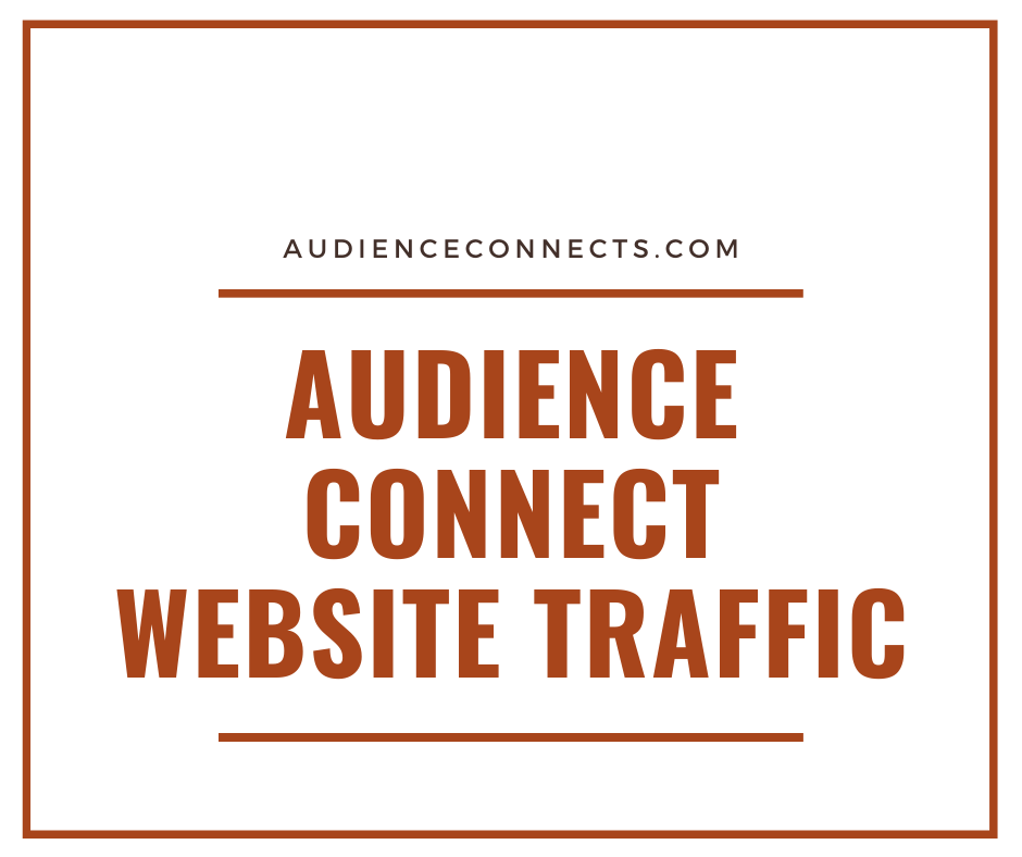 I will Deliver 100 000 Worldwide Website Traffic to any website URL