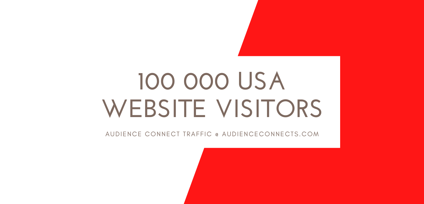 I will deliver 100 000 USA Website Visitors with the added Value