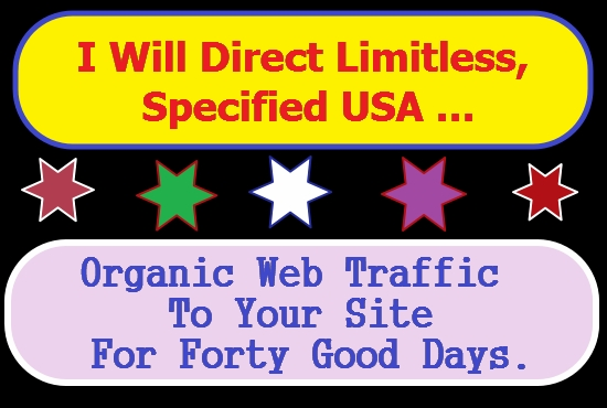 I WILL DRIVE SAFE ORGANIC HIGH-QUALITY WEB TRAFFIC TO YOUR WEBSITES AND BLOGS