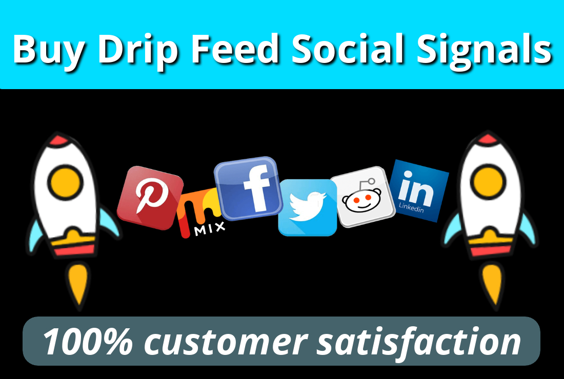 I Will Provide You Manually 1500 High Quality DRIP FEED Social Signals