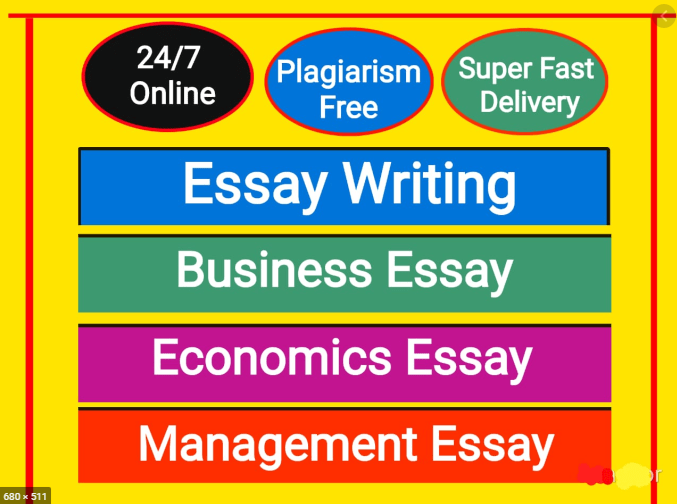 write essays in business,  economics,  and management